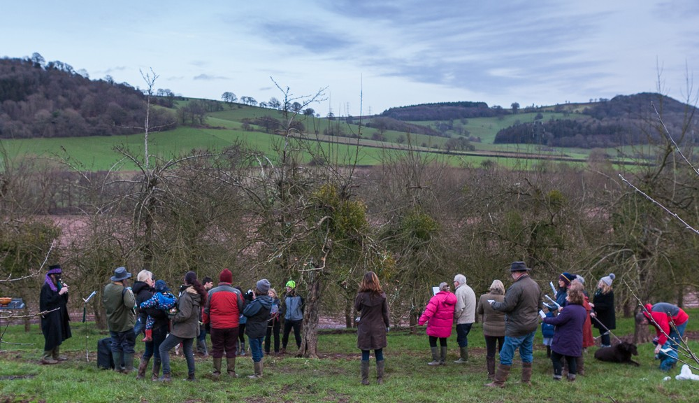 Wassail held at Apple County
