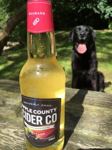 Rhubarb fruit cider in foreground, black lab in background