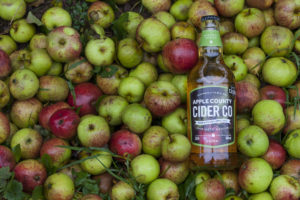 Apple varieties. Apple County Cider
